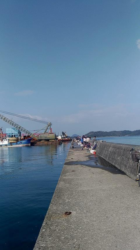 コノシロ釣りと言えば阿村港!