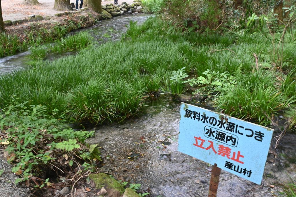 【産山村田尻】名水百選の1つ!池山水源