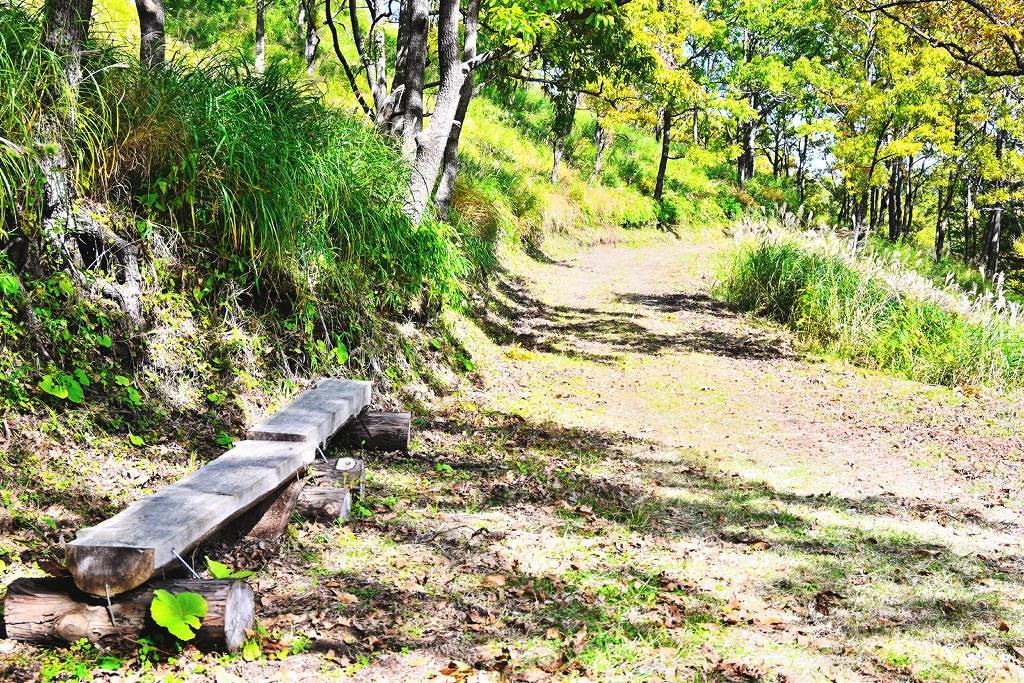 【南小国町中原】これから見頃を迎える秘境!マゼノ渓谷
