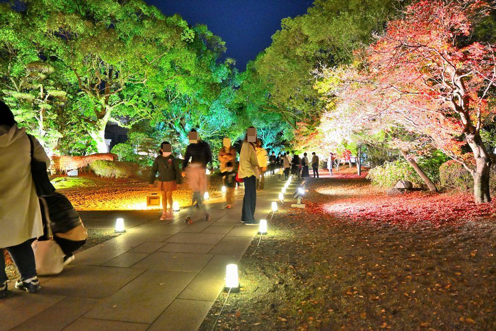 【熊本市中央区本丸】11月20日~12月6日までの期間限定夜間公開!熊本城 城あかり