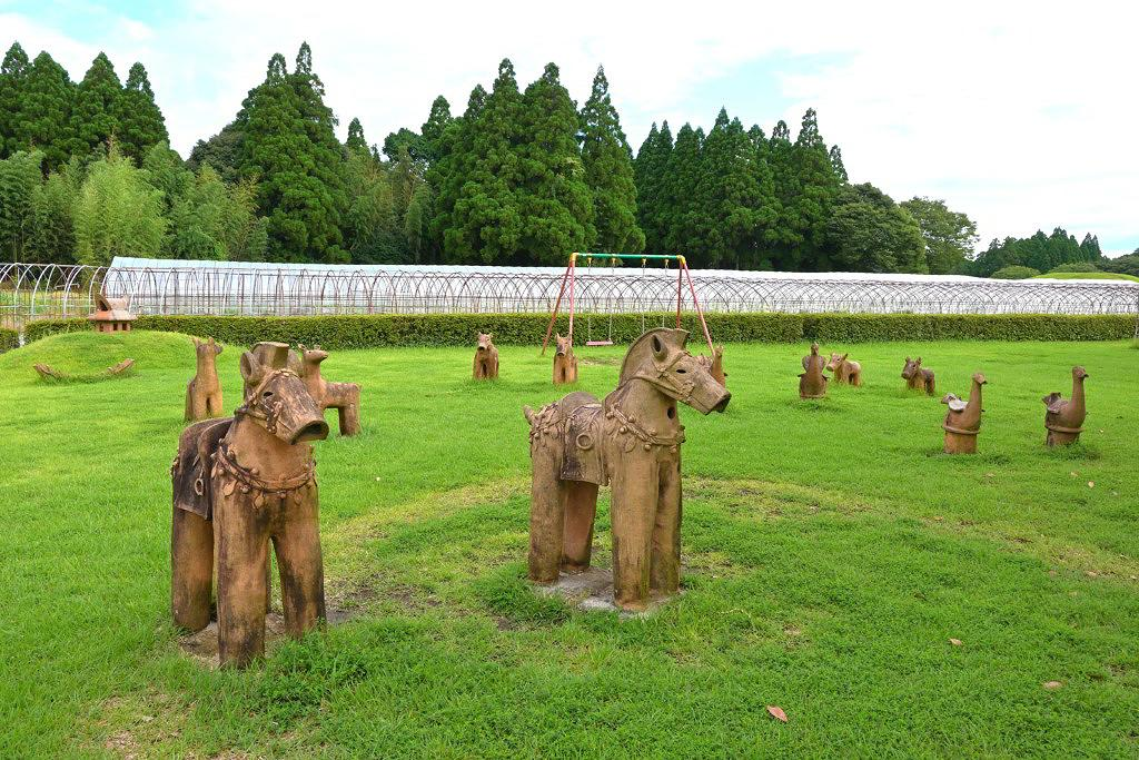 山鹿市 ハス 睡蓮 ひまわり 鹿央古代の森公園 はにわの動物園